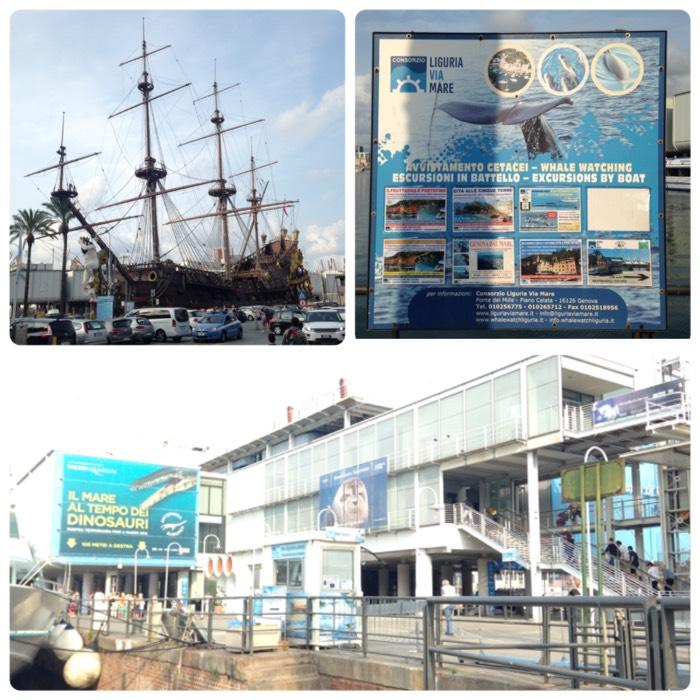 イタリア最大の水族館、ジェノバ水族館。