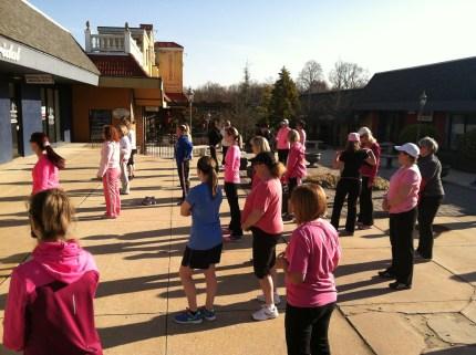 2014 susan g. komen 3-day breast cancer walk philadelphia training