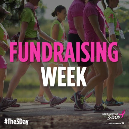 susan g. komen 3-Day breast cancer walk blog fundraising