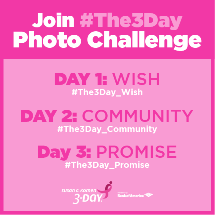 3DAY_2015_SocialMedia_PhotoChallenge_#The3Day_fp