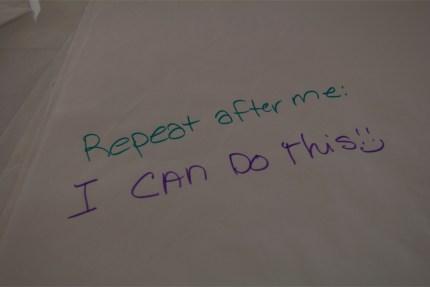 susan g komen 3-day breast cancer walk blog skip fundraising