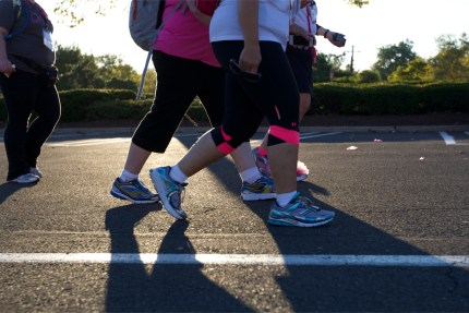 susan g. komen 3-Day breast cancer walk blog training