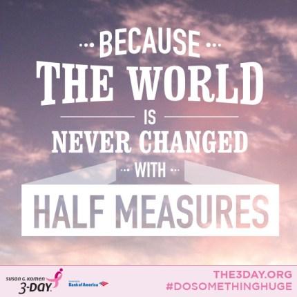 susan g. komen 3-Day breast cancer walk blog 60 miles world cancer day