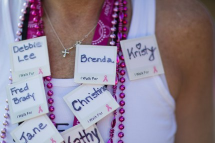 susan g. komen 3-Day breast cancer walk blog fundraising donations