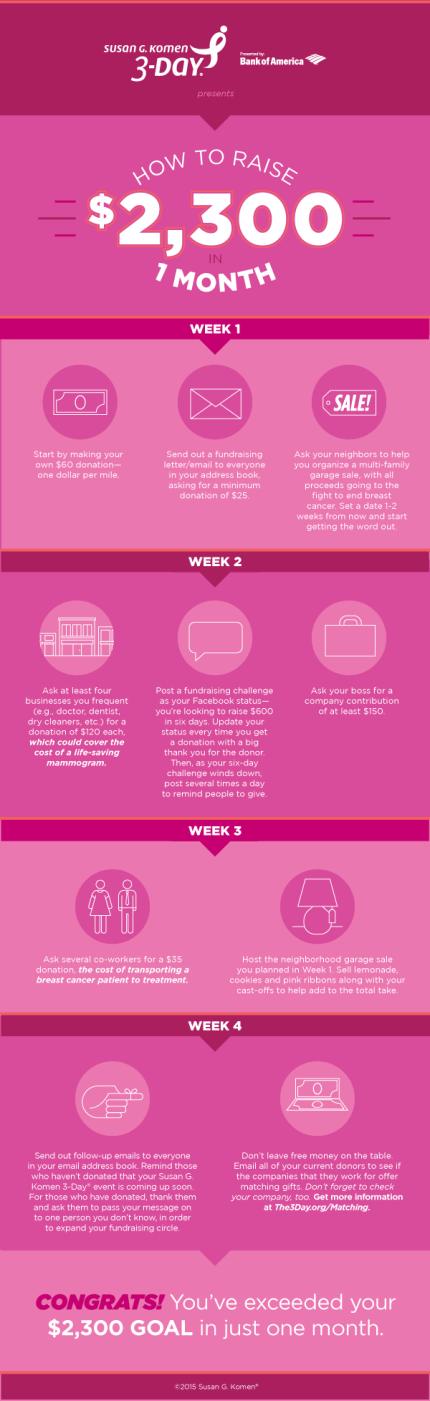 susan g. komen 3-Day breast cancer 60 mile walk blog fundraising $2,300