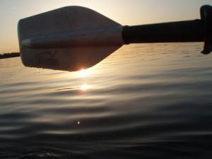 paddle-web-2010