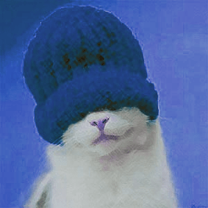 Dave the Cat 2.png