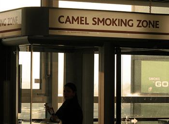 CamelSmoking