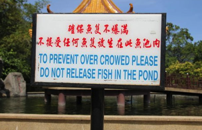 Being Crowed in China