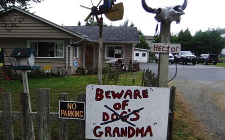 Bad Grandma Sit Stay Vancouver Island Canada