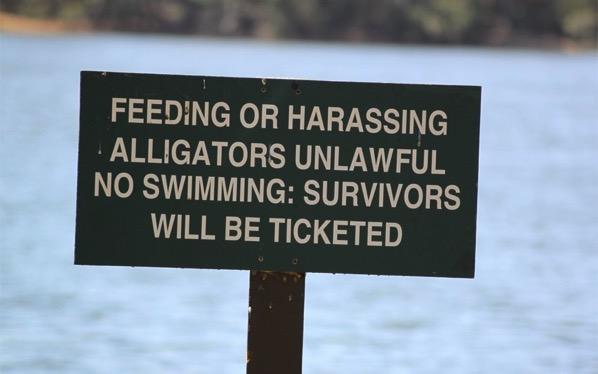 Swimming fun in S Carolina