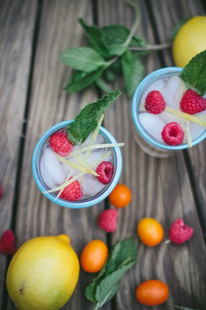 Shrubs- Vinegar Based Drinks | The Everyday Chef and Wife