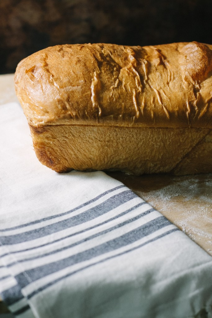 The Best Homemade Sandwich Bread Ever