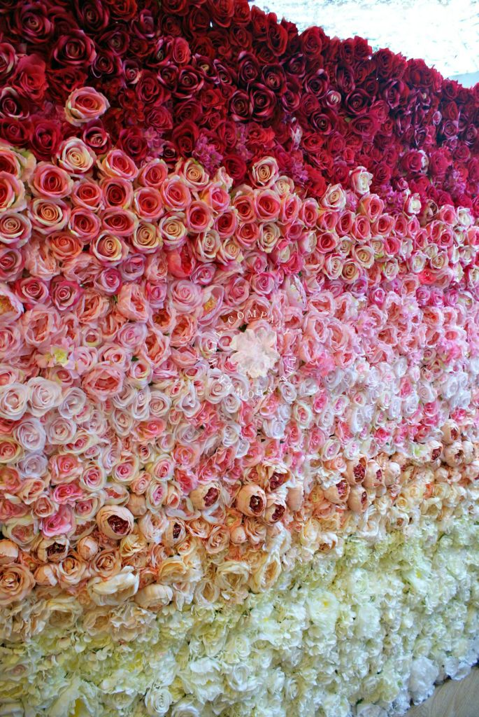 flower wall, floral backdrop, ombre, ombre wedding, ombre flower wall