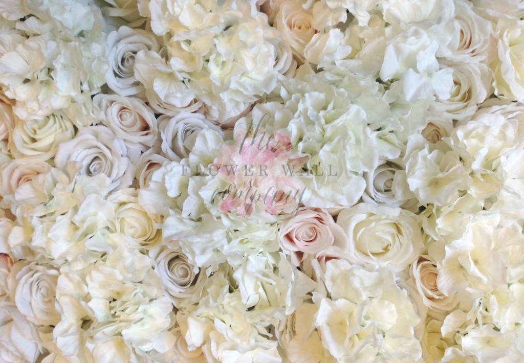 Blush Ivory Hydrangea flower wall
