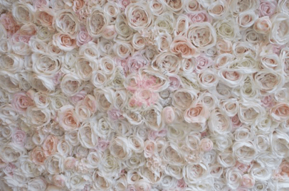 blush flower wall where to buy a flower wall cheap flower wall