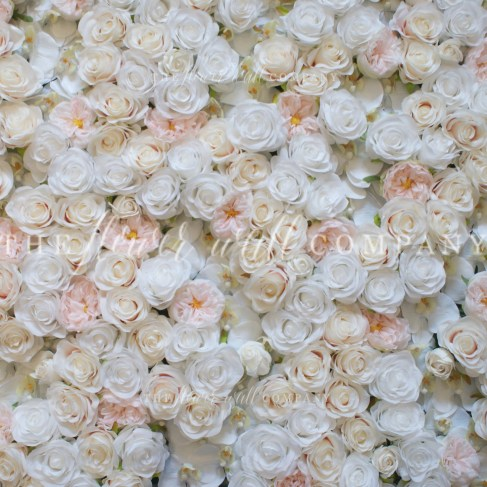 orchid blush rose peony white flower wall