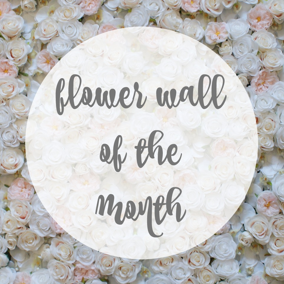 peony orchid rose blush white flower wall