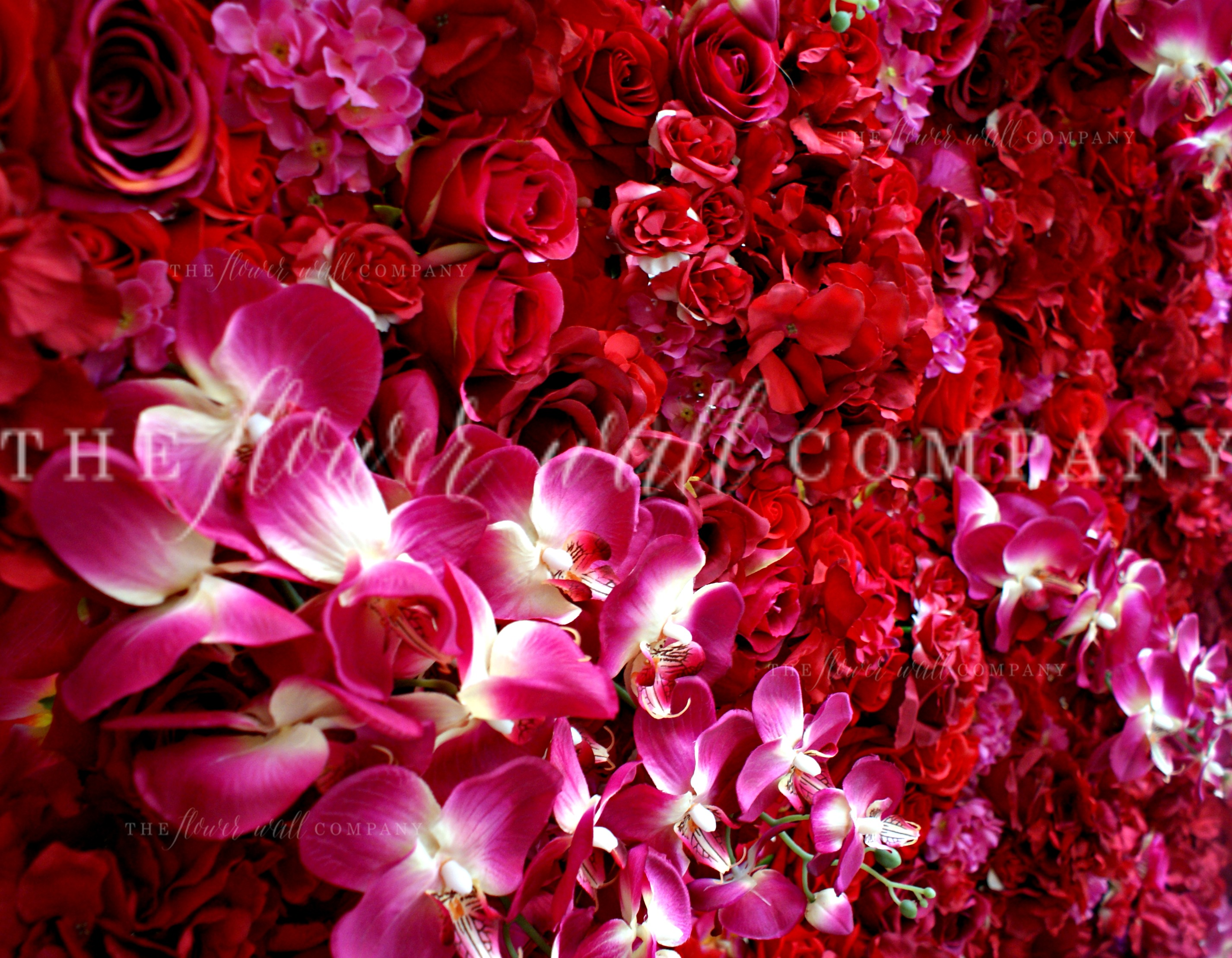 Red and pink flower wall floral backdrop with roses, orchids and hydrangea for weddings and events