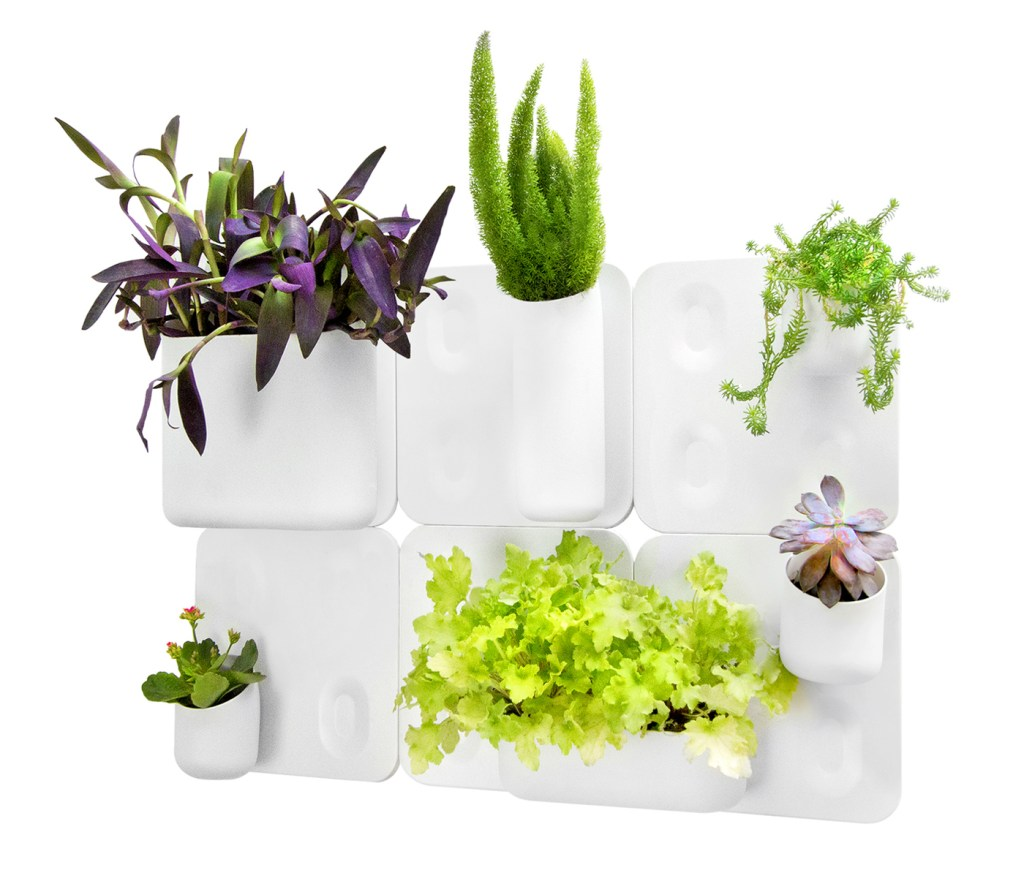 6 plants thrive in an Urbio's Big Happy Family vertical planter system