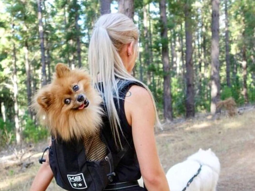 A woman is seen hiking in the woods with two dogs, one of which is strapped to her back in a K9 Sport Sack trainer carrier