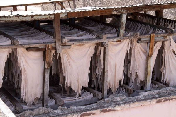Once tanning is achieved the leather is hung on rods to dry in a cool semi-moist place.