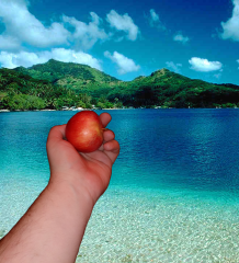 photo editing arm holding apple on a beach