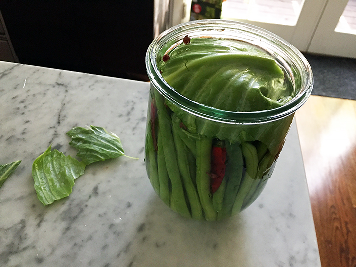 Sichuan pickled green beans and chilies