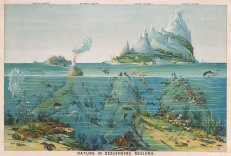 """Levi Walter Yaggy's """"Nature in Descending Regions"""" (1893)"""