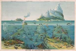 "Levi Walter Yaggy's ""Nature in Descending Regions"" (1893)"