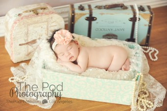 baby-in-a-basket-newborn-photography