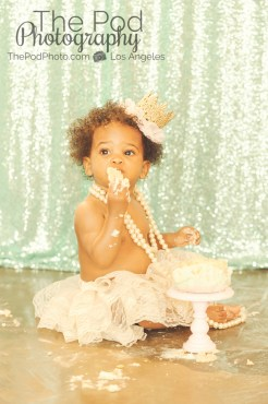 Best-First-Birthday-Cake-Smash-Photographer-Brentwood-Susiecakes