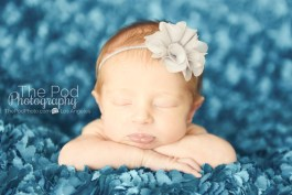 blue-and-gray-baby-pictures