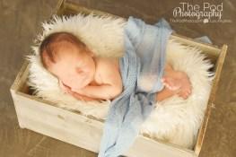 snuggly-newborn-boy-sleeping-in-a-box