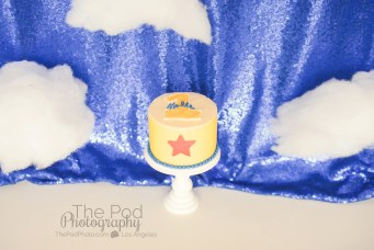 Best-Smash-Cake-SusieCakes-The-Pod-Photography