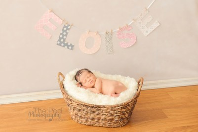 newborn-in-a-basket-with a-name-banner