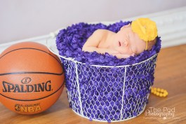 lakers-basketball-newborn-picture