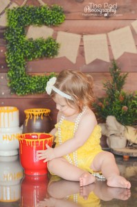 custom-design-set-hunny-pots-hundred-acre-wood-winnie-the-pooh-cake-smash-los-angeles-studio-the-pod-photography