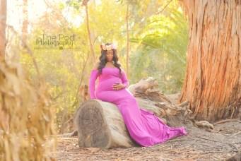 bohemian-rustic-maternity-photography-pasadena