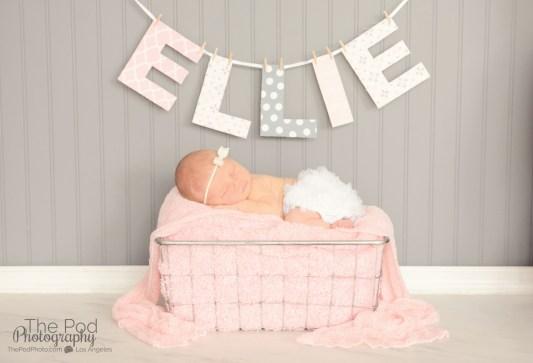 ellie-name-banner