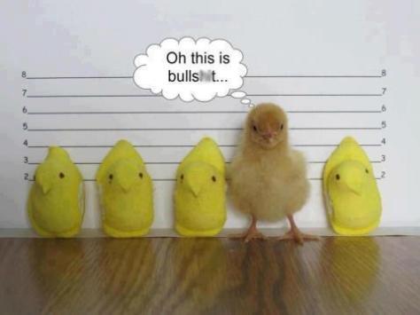 Peeps-jail-107239341717