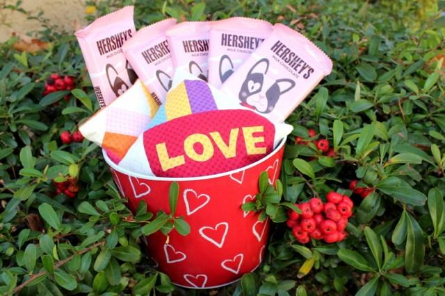 valentine bean bags2