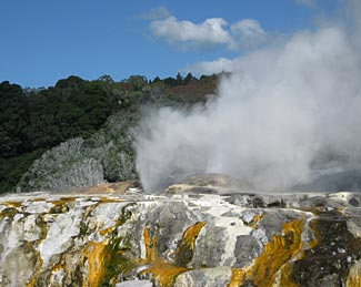 One of the many geysers in the Rotorua geothermal area.