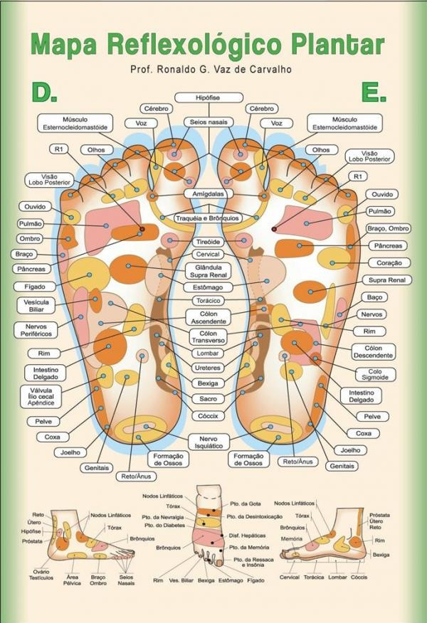 Excelente Mapa de Reflexologia