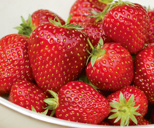 Strawberries - grow your own!