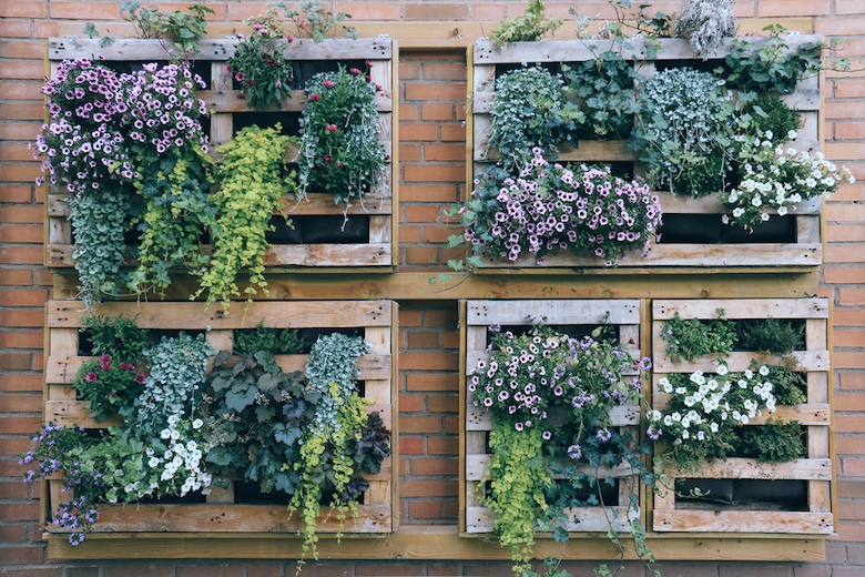 Vertical pallets that have been turned into planters