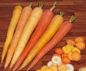 The vegetable revolution