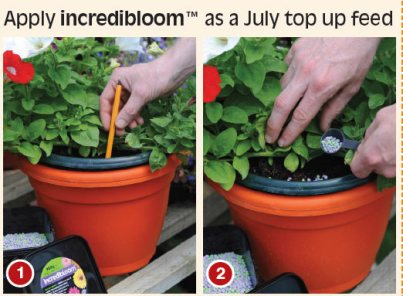Incredibloom