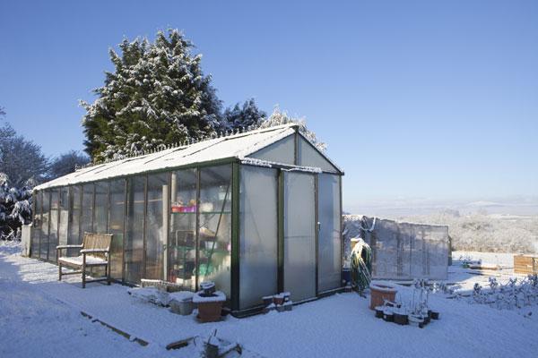 greenhouse winter