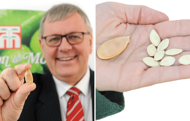 Paul Hansord with giant pumpkin seeds